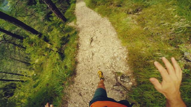 vídeos de stock, filmes e b-roll de pov trilha correndo na floresta: executar off-road - fazendo cooper