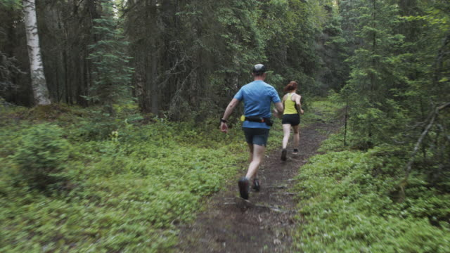 trail running with senior adults - wilderness stock videos & royalty-free footage