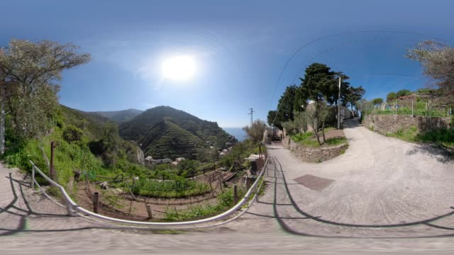 stockvideo's en b-roll-footage met 360 vr / trail through terraced fields of vernazza - tuinpad