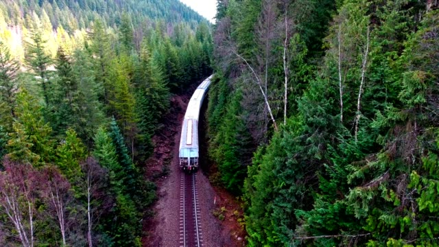 Train in the British Columbia Rockies