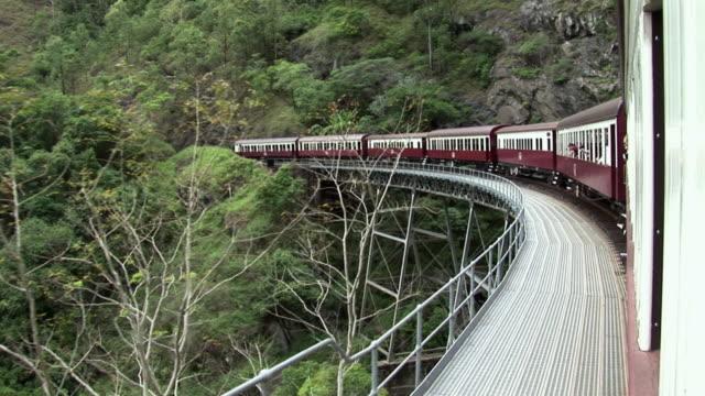 ms pan train on bridge in rainforest, kuranda, queensland, australia - rainforest stock videos & royalty-free footage