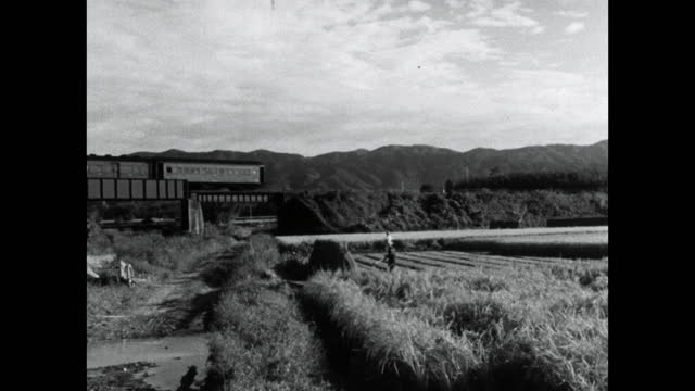 train passes by rice field in japan countryside; 1964 - kyoto prefecture stock videos & royalty-free footage
