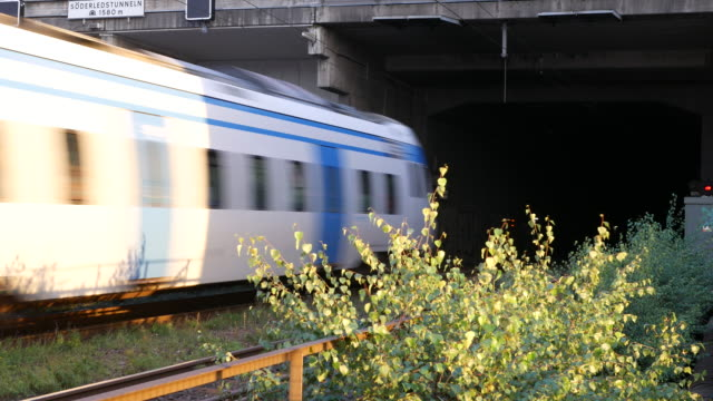 Train passing by into tunnel
