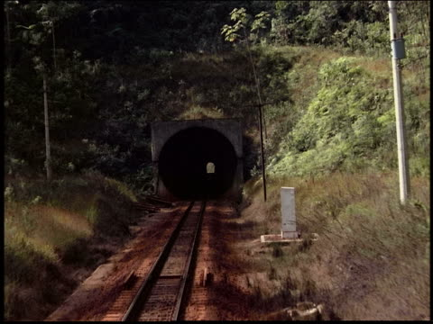 Train point of view into tunnel in countryside / Brazil
