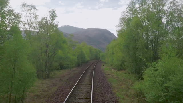 train to mallaig - scottish highlands stock videos and b-roll footage
