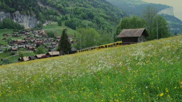 ws, train traveling through alpine landscape, lauterbrunnen valley, bern, switzerland - alm stock-videos und b-roll-filmmaterial