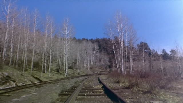 POV, Train traveling through forest, crossing barriers, Colorado, USA