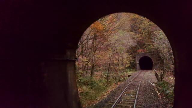 ws train pov tunnel seen through train window in autumn, semboku, akita prefecture, japan - トンネル点の映像素材/bロール