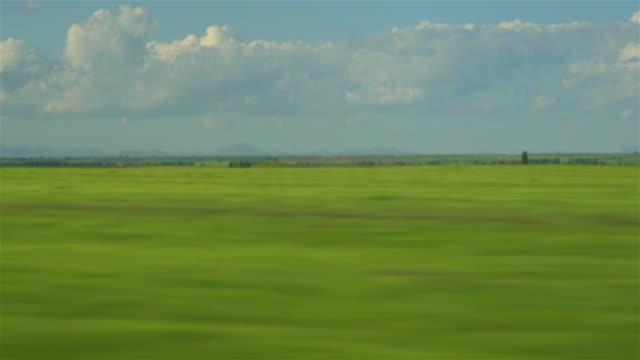 vídeos de stock e filmes b-roll de train view through the window - landscape scenery