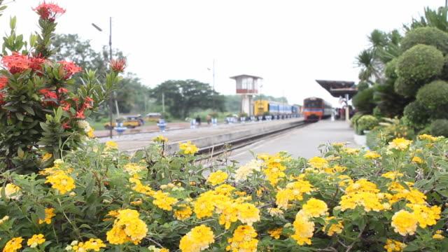 Zug mit Blumen.