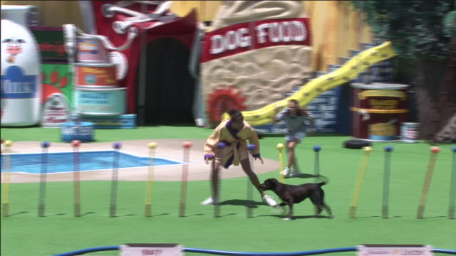 A trainer leads her dog through an obstacle course.