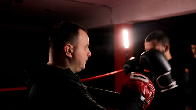 trainer training with kick boxer - kickboxing stock videos and b-roll footage