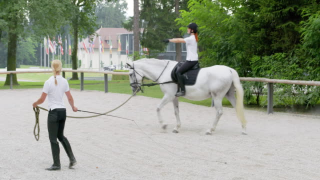 PAN Training a white horse in the longe