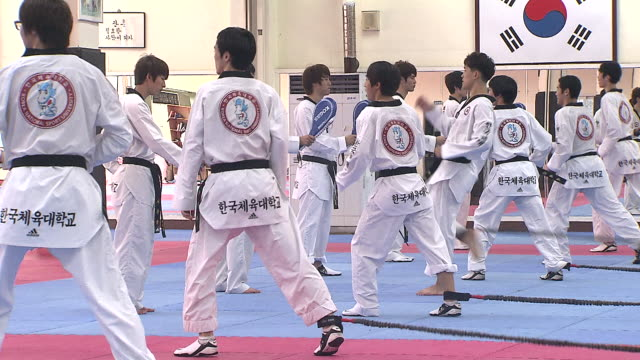 ms training of taekwondo at taekwondo studio / seoul, south korea - taekwondo stock videos & royalty-free footage