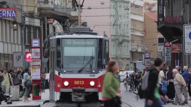 trams on vodickova and wenceslas square, prague, czech republic, europe - prague stock videos & royalty-free footage