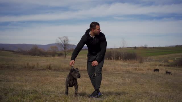 ドッグショーのためのトラニング若い子犬 - 突き出た鼻点の映像素材/bロール