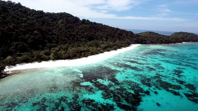 vídeos de stock e filmes b-roll de a tranquil beach with a coral lagoon beachfront, similan islands, thailand - david ewing