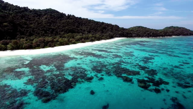 A tranquil beach with a coral lagoon beachfront, Similan Islands, Thailand