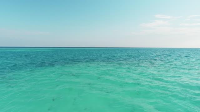 vídeos de stock, filmes e b-roll de ms tranquilo azul tropical fruits, maldivas - plano geral ponto de vista