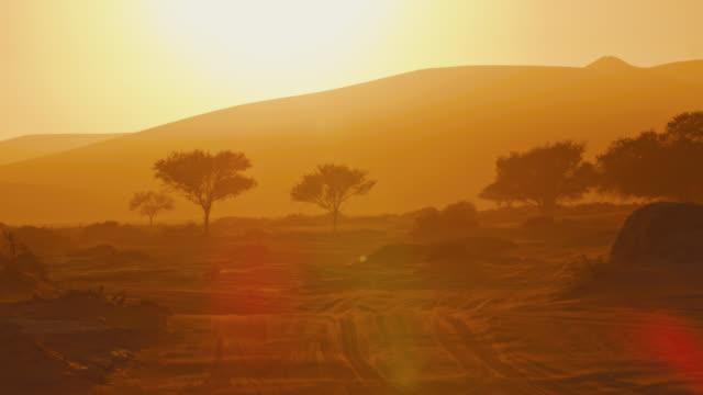 ws tranquil golden desert landscape at sunset,deadvlei,namibia,africa - natural parkland stock videos & royalty-free footage