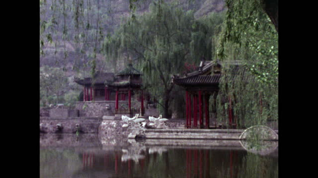 vídeos de stock, filmes e b-roll de zo tranquil huaqing pool, pagodas and weeping willow; 1973 - health farm