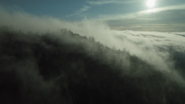 tranquil mountain landscape with fog - atmosphere filter stock-videos und b-roll-filmmaterial