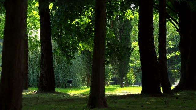 Ruhigen Park im Bezirk resort