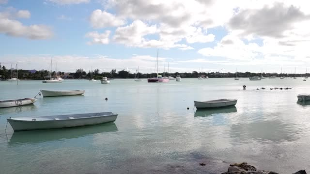 tranquil scene of boats moored in harbour in port louis mauritius - インド洋点の映像素材/bロール