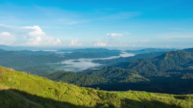 vídeos y material grabado en eventos de stock de tranquila escena de niebla rollos a través de fluir sobre las montañas tropicales en la mañana, video de lapso de tiempo - conífera