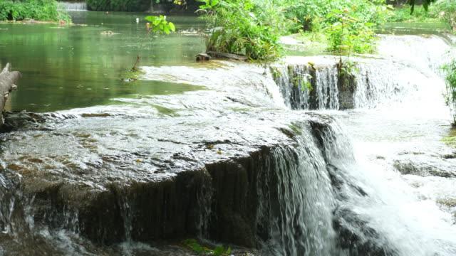 瀑布溪的寧靜景象 - 自然奇觀 個影片檔及 b 捲影像