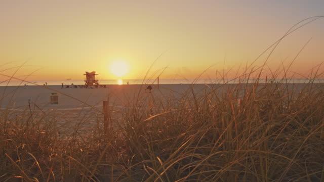 ws tranquil sunset ocean beach, miami beach, florida, usa - miami stock videos & royalty-free footage