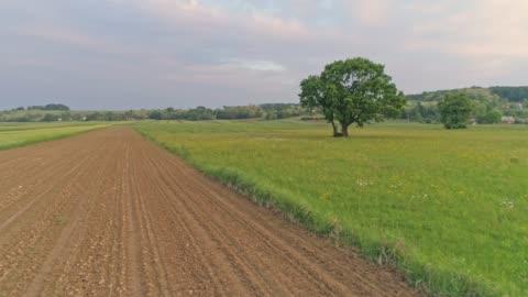 vídeos y material grabado en eventos de stock de ms tranquilo, idílico paisaje rural, prekmurje, eslovenia - campo arado