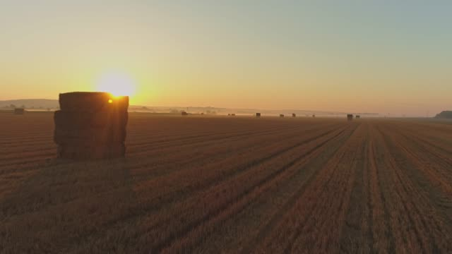 ws tranquil,idyllic sun shining over hay bales in rural field,prekmurje,slovenia - hay stock videos and b-roll footage