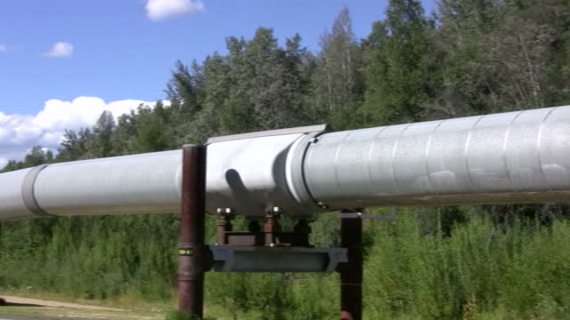 trans alaska oil pipeline - pipeline stock videos and b-roll footage