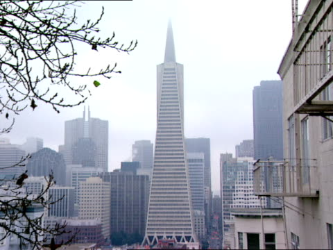 vidéos et rushes de trans america pyramid from top of hill w/ residential houses in fg. - transamerica pyramid san francisco