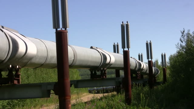 trans-alaska oil pipeline - pipeline stock videos & royalty-free footage