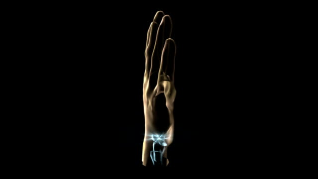 a transparent blue rotating x-ray skeleton and human hand on a black screen. - メディカルイラスト点の映像素材/bロール