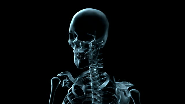 A transparent blue rotating X-ray skull and torso on a black screen.