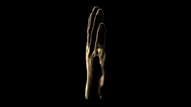 a transparent brown rotating human hand on a black screen. - biomedical illustration stock videos & royalty-free footage