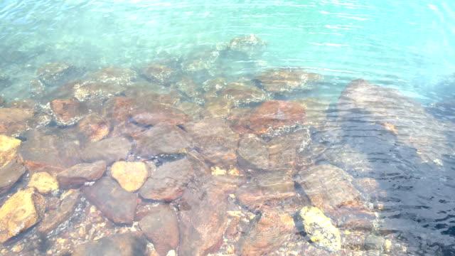 Transparent Clear Light Blue Water, Ripple, Fresh Water Mangrove