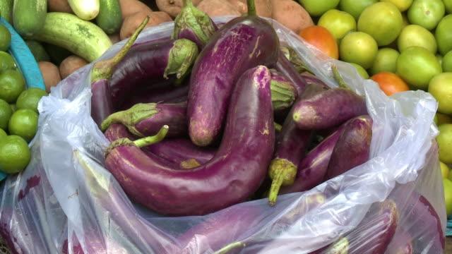 a transparent plastic sack full of fresh eggplants - kurbits bildbanksvideor och videomaterial från bakom kulisserna
