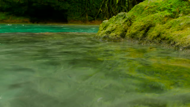 transparent water of el nicho waterfall close-up, cuba - sancti spiritus province stock videos and b-roll footage