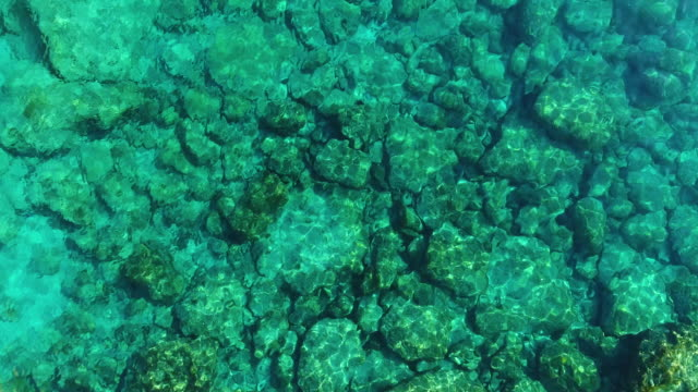 Transparent waters above stones, Blue lagoon, the Protaras area, Cyprus. Aerial drone shot.