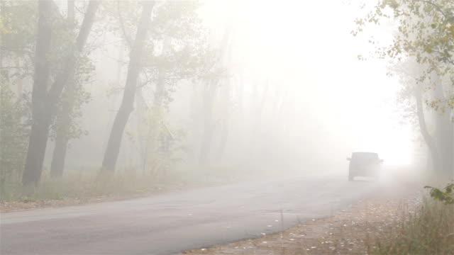 霧の中で林道に沿って交通機関の乗り物。 - かすみ点の映像素材/bロール