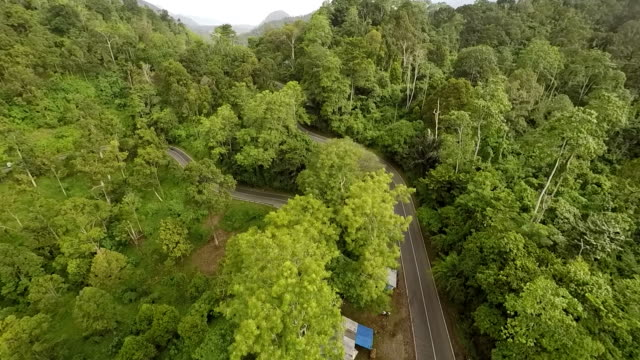 Trans-Sumatran Highway and Forest, Aceh
