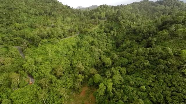vídeos y material grabado en eventos de stock de trans-sumatran highway and tropical rainforest, aerial view - isla de sumatra