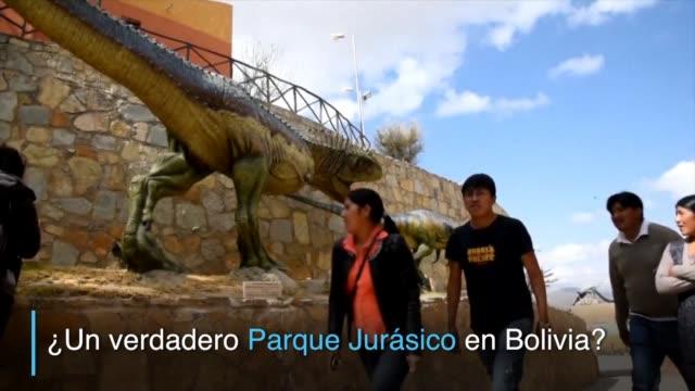 tras el descubrimiento de lo que podria ser la huella de uno de los dinosaurios mas grandes del planeta los cientificos locales se entusiasman con el... - planeta stock videos & royalty-free footage