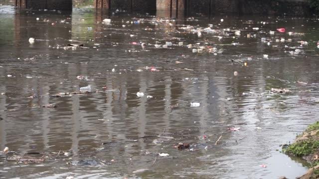 vídeos de stock, filmes e b-roll de trash flowing at river - poluição do plástico