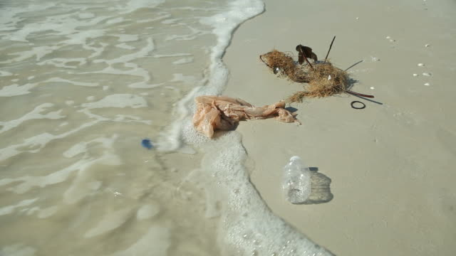 trash on a beach - fort myers beach stock videos & royalty-free footage