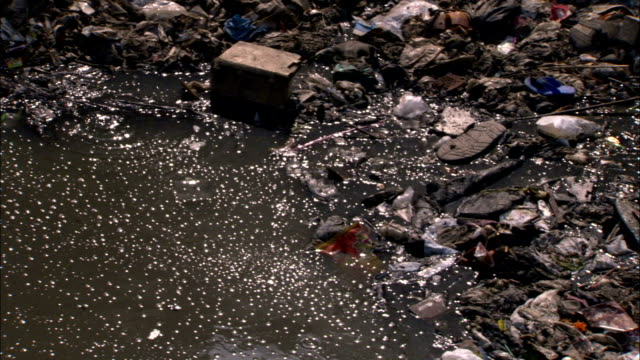 Trash pollutes a riverbank in Mumbai. Available in HD.